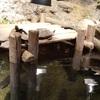 歴史のある水族館