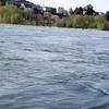 ワンキャスト・ツーステップの釣り下がり…今また九頭竜川の慣例のススメ