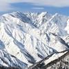 白馬岩岳、2月12日レポート  カービングには最適のコンデション!
