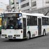 鹿児島交通(元京王バス) 987号車