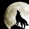 【神回】アルティメット人狼5第三戦を徹底考察&感想。マドック&ダンカンが強すぎる件について