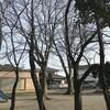 かもめ公園
