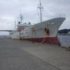 借金返済のためにマグロ漁船は古い!今は期間工で楽しく借金返済!