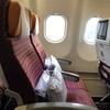 タイ航空の新しいキャビン:A330-300 33R