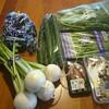 10月16日 食材の買い方について。