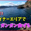 【フカセ釣り】高知のマイナーエリア・周防形の磯より愛をこめて