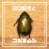【2019、夏の思い出】図らずも子どもが捕まえてきたコガネムシを一夏飼育してしまった件