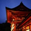 夏の夜の下鴨神社