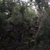 カンボジア観光  天空の城ラピュタベンメリア遺跡雨季の時