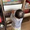 赤ちゃんのいたずら対策 本棚の本を守りたい
