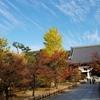 京都ぶらり 紅葉の季節 お薦めスポット