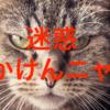 「迷惑かけるべからず教」がはびこる不寛容な日本