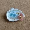 貝殻の海(失敗作)とブックマークのお返事