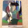 【今日の龍神カードメッセージ/22.岩龍】