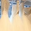 初めてのウエディングドレス試着に大興奮!似合うウエディングドレスの選び方と初試着レポート!!