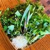 信州山菜鍋のサービス開始。