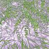 写真でアート:GIMPの「しきい値」で作成した白黒画像と重ねて合成してみる。(2)