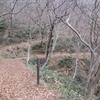 ◆3/18       高館山~八森山③…瀬ヶ沢コース~八森山山頂