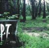 P.T.とかいう、後遺症の残る幻のホラーゲーム。