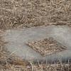 [三角点]★日の出浜(四等三角点、点名:日の出町)標石