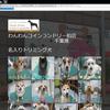 トリミング犬ご紹介(名前入り)