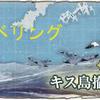 【艦これ】 低燃費空母レベリング3-2-1