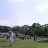 子連れフェスキャンプでHOT FIELD(ホットフィールド)夏フェスキャンプイン1歳デビュー編