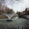 3月下旬:都立井の頭恩賜公園をお写んぽ。その3 弁財天付近編