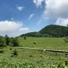 高山植物とコンパクト感!長野県東御市の「池の平湿原」