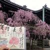 3月〜5月の絵入り法語印 京都・佛光寺
