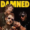 New Rose【 The Damned 】