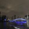 【新オープンホテル】夜の楽しみ、隅田川から東京湾へナイトクルーズ@「ザ・ゲートホテル両国 by HULIC」(7)