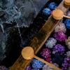 【写真】紫陽花を撮る+α