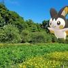 東京の夏空を飛ぶエモンガ【ポケモンGOAR写真】浜離宮のキバナコスモスと
