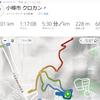 小樽でクロカン14km