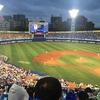 【超入門編】初心者必見!これさえ知れば野球が分かる!野球用語4選☆
