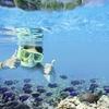 夏休みにおすすめ! 子供でも、泳げなくても楽しめる、画期的なシュノーケリンググッズを紹介します!!