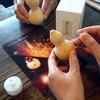 10月23日 ミニあかり玉を作りに、京都へGO! かさこ塾フェスタ京都のご案内