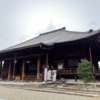 【奈良観光】大和西大寺観光!見事な蓮の花を楽しむ。