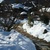 ☆京都大原:水墨画の世界 勝林院 「天台声明の道場」