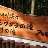 シワガラの滝【兵庫県 新温泉町】~超レアな幻の滝を楽しめる軽ハイキング、かつての過酷さはなく、爽やかな新緑と水の流水音は夏の訪れの予感と水の涼~【2021年初夏】