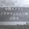 モノクロ写真の綺麗さを伝えたい!中判カメラとモノクロフィルムで撮る、吉祥寺と井の頭公園