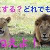 【書評】 アメリカの高校生が読んでいる起業の教科書 山岡道男・浅野忠克著
