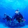 ♪オープンウォーターおめでとう、透明度30mの慶良間は最高ーー♪〜沖縄ダイビングライセンス慶良間〜