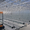 日本初の電解水設備を導入した最先端のオランダ式園芸用大型ハウスが竣工!官民学の連携により「還元野菜プロジェクト」が本格始動