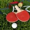 卓球の張本智和が嫌いの人続出・・・チョレイと叫ぶのが原因?それとも中国人だから?