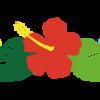 【ウクレレ】橿原店ウクレレ愛好会「Ohana」~田中先生によるウクレレアンサンブル~6/25(月)!