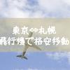 私が年末年始でも、札幌-東京間を飛行機で格安で移動した方法