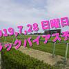 2019,7,28 日曜日 トラックバイアス予想 (新潟競馬場、小倉競馬場、札幌競馬場)