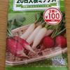 【プチ家庭菜園】100円ショップの二十日大根を育ててみる 現在9日目